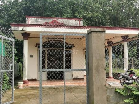 Nhà cấp 4 nguyên căn 200m2 cho thuê tại Phước Vĩnh An huyện Củ Chi sân hè rộng rãi, 200m2, 2 phòng ngủ, 1 toilet